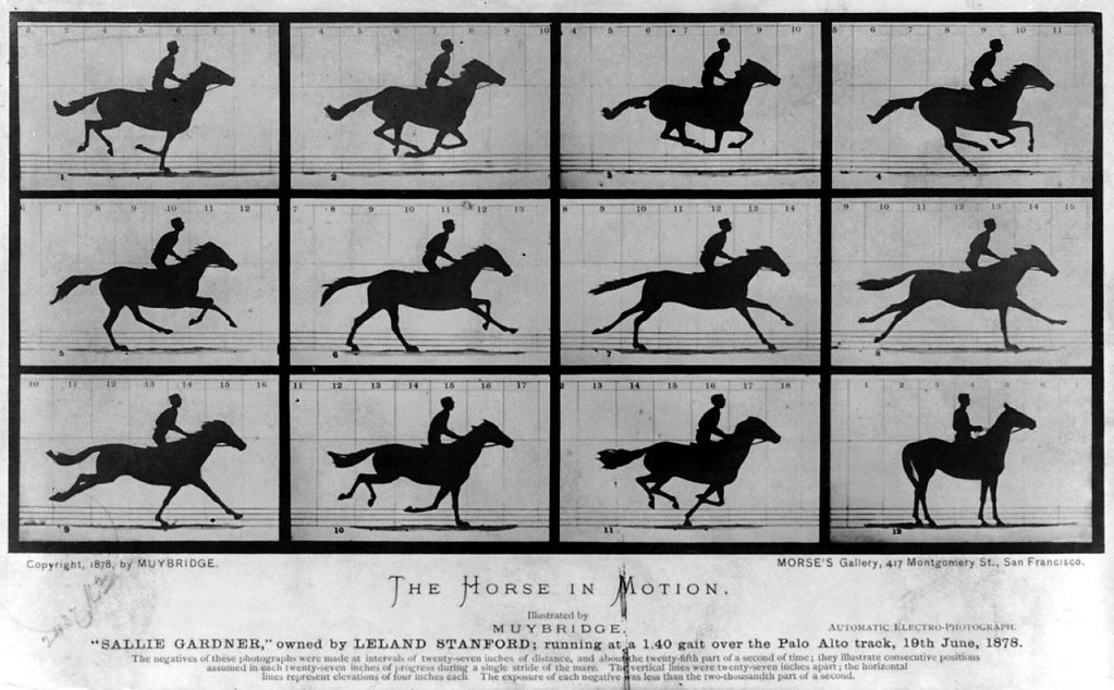 """The Horse in Motion"" by Eadweard Muybridge - Library of Congress Prints and Photographs Division; http://hdl.loc.gov/loc.pnp/cph.3a45870. Licensed under Public Domain via Wikimedia Commons - https://commons.wikimedia.org/wiki/File:The_Horse_in_Motion.jpg"